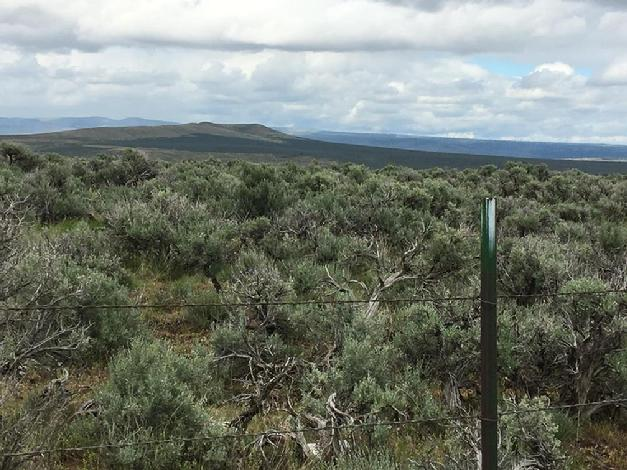 electric fence sagebrush mountains big sky